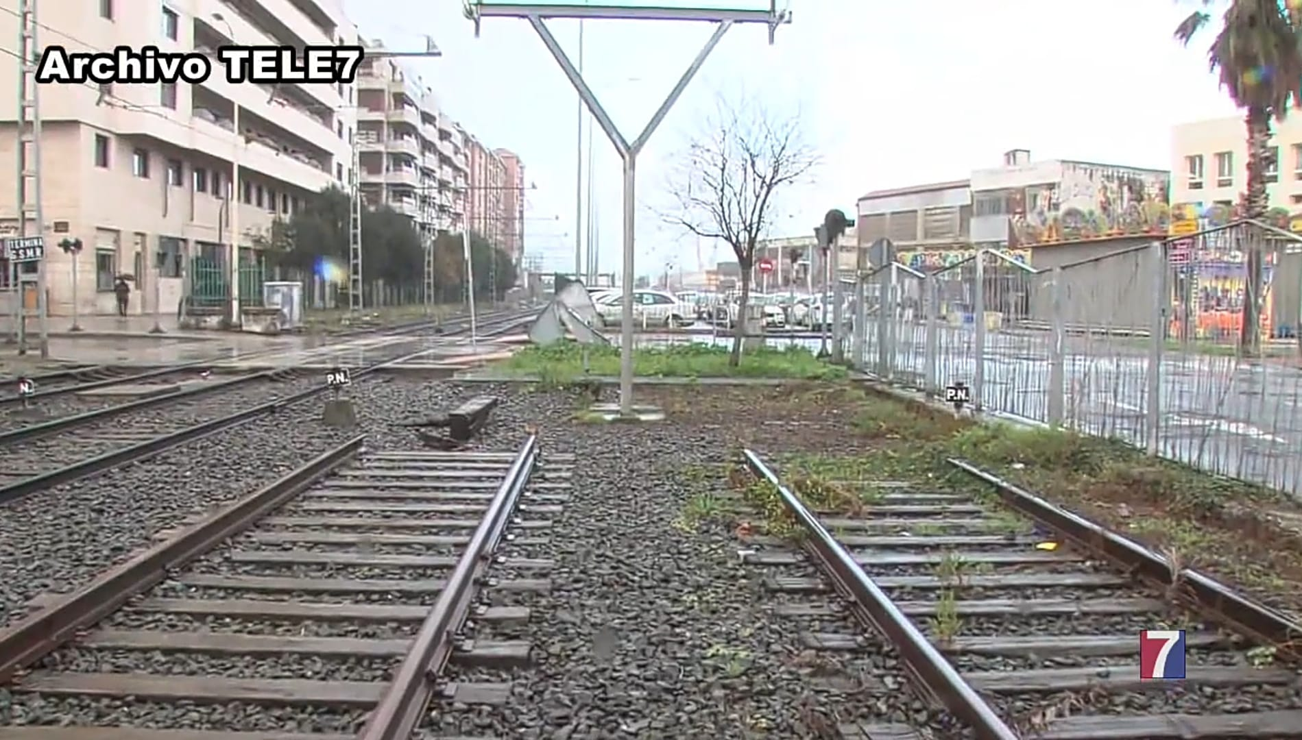 tele7.tv